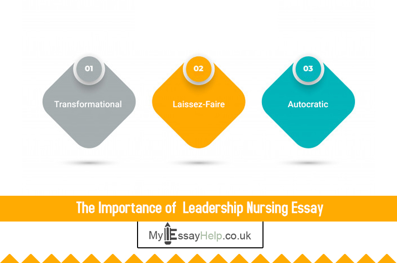 Leadership Nursing Essay